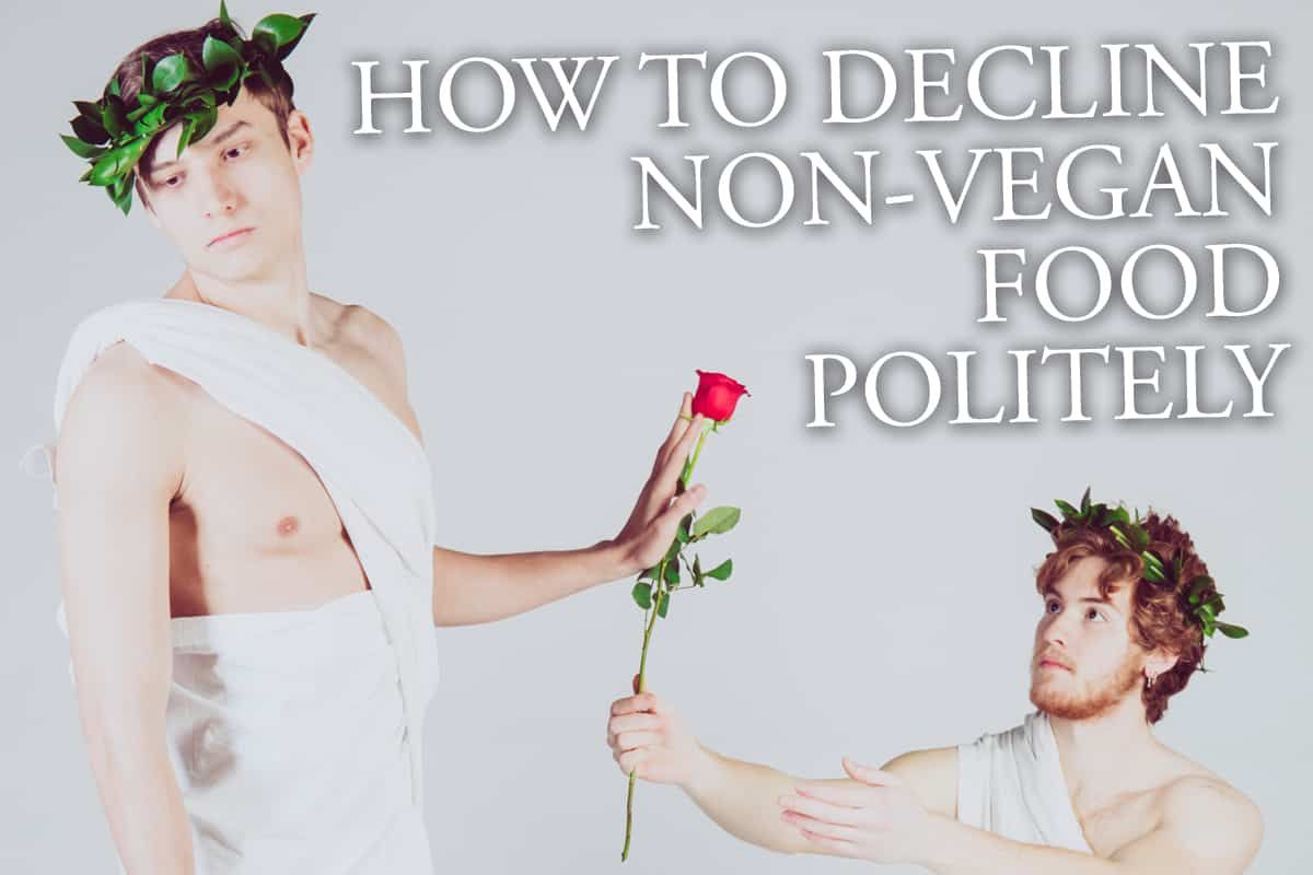 How To Politely Decline Non-Vegan Food You Are Offered