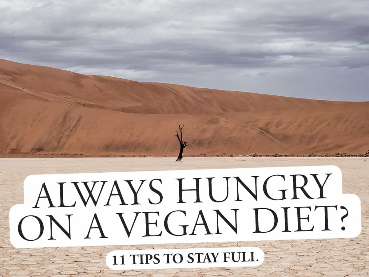 Always Hungry as a Vegan? 11 Tips to Stay Full