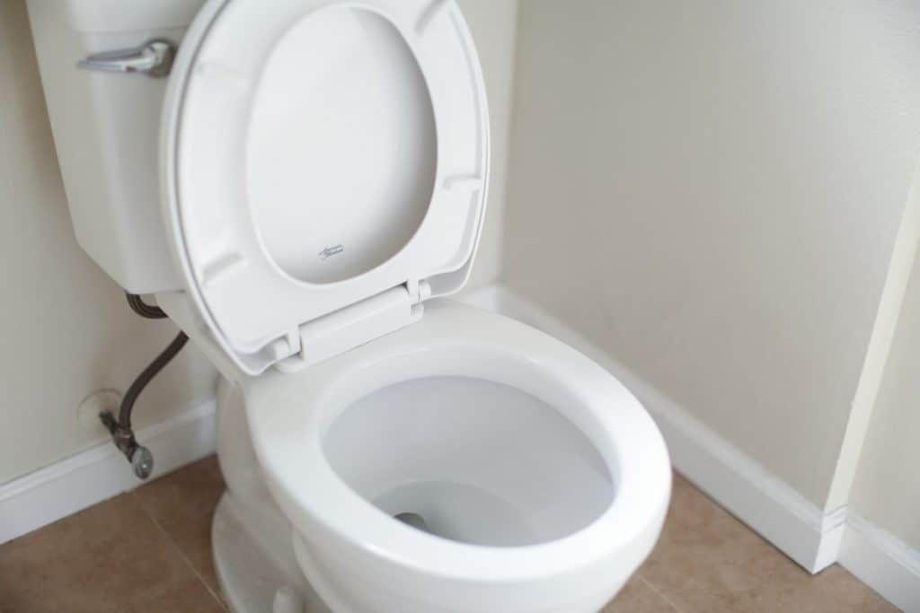 vegan diarrhea
